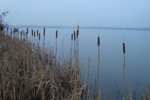 Blick auf den Blausteinsee