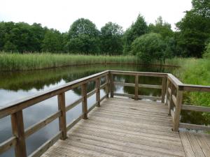 Wasserblick 7