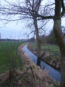 Klassischer Niederrhein