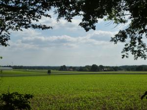 Blick auf den münsterländer Niederrhein