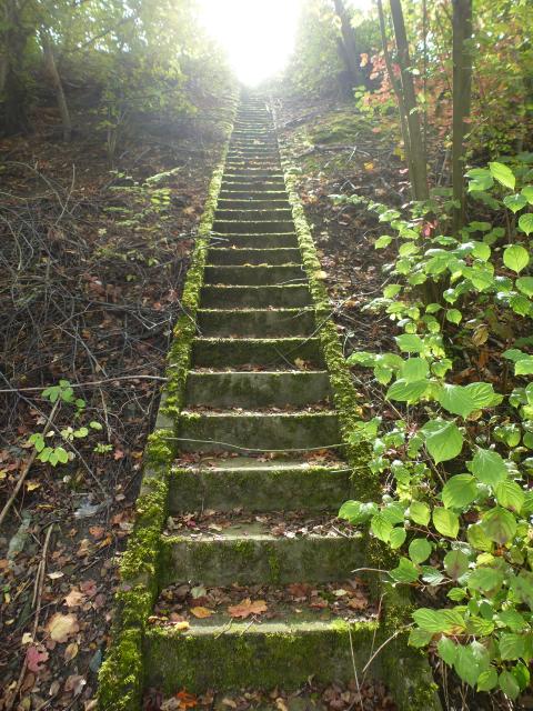 Die Treppe führt ins Licht