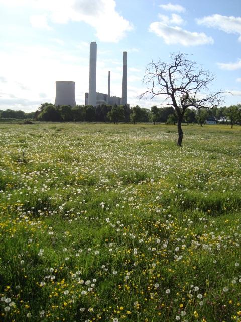 Natur und Industrie