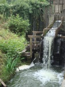 An der Tüschenbroicher Mühle