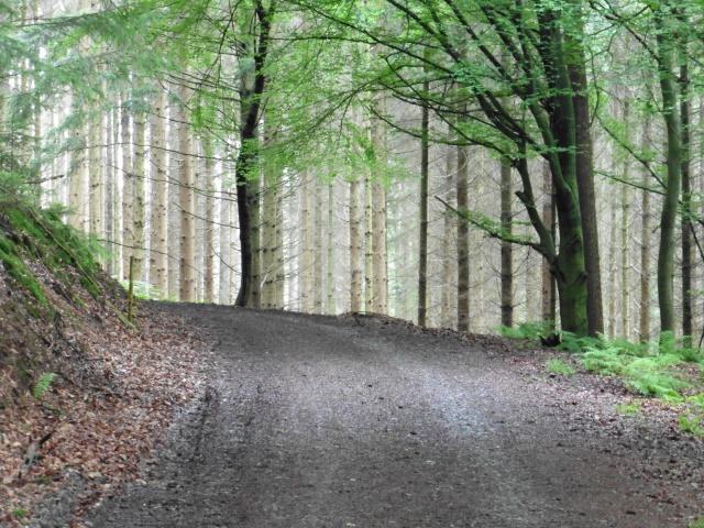 Ein Weg wie in den Bergen mitten in Unterschbach
