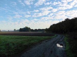 Auf dem Residenzweg in der Bockerter Heide