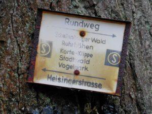 Rundweg im Schellenberger Wald