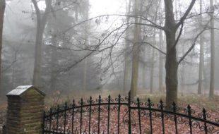 Mystischer Niederrhein bei Geldern
