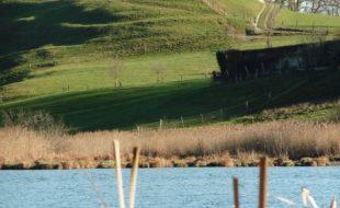 Ausblicke am Egglburger See