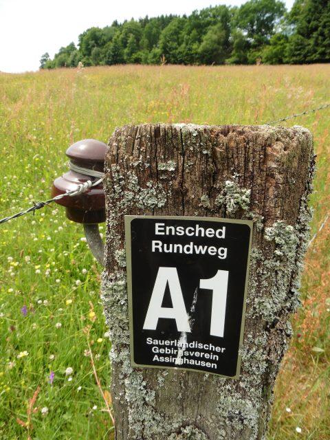 Wegezeichen in Assinghausen
