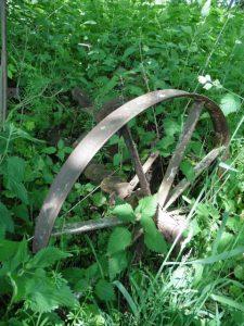 Fundstück am Wegesrand bei Assinghausen