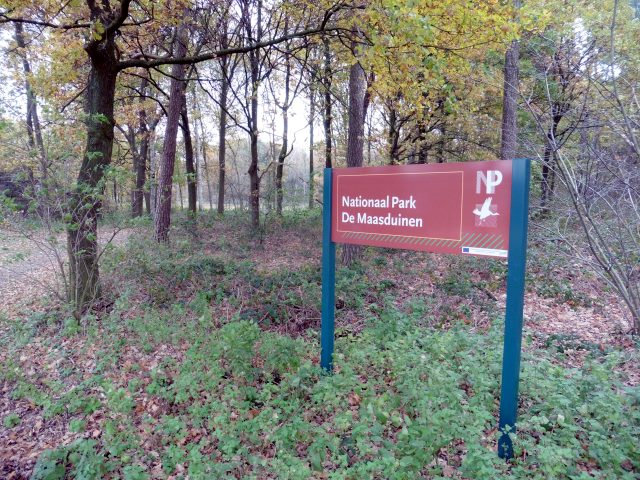 Nationalpark Maasduinen in Lomm