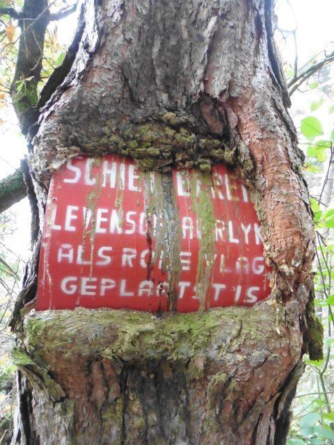 Warnung wovor? in der Schandelose Heide