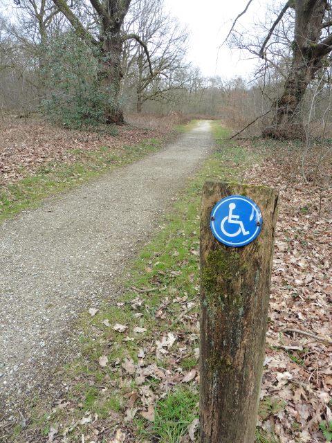 Der Rollstuhlwanderweg in Wellerlooi