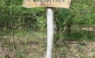 """Das """"Hasenlager"""" in Wellerlooi"""