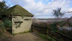 Vogelbeobachtungshütte am Reindersmeer