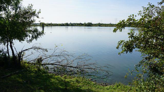 Blick auf den See des Geelenbeek