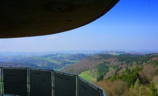 Blick vom Gänsehalsturm
