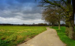 Niederrhein halt