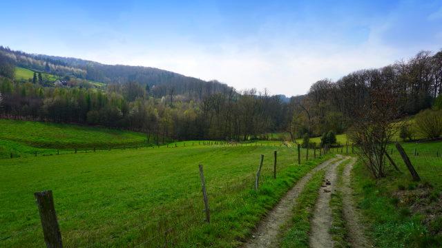 Fast wie im Allgäu - der Blick ins Elbschbachtal