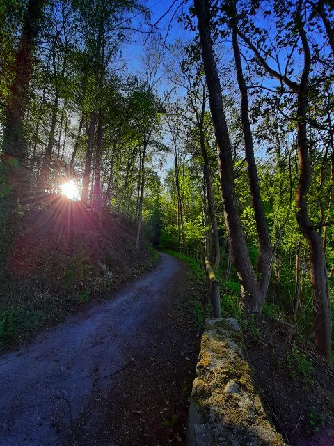 Auf dem Anna-Linder-Weg