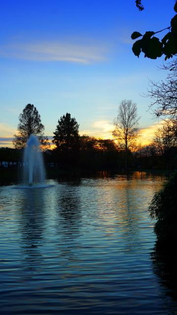 Im Ludwig-Rehbock Park