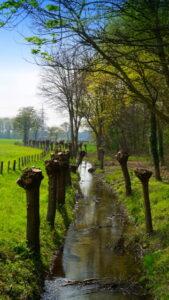 Am Neukirchener Kanal