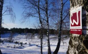 Auch im Winter eine schöne Wanderung