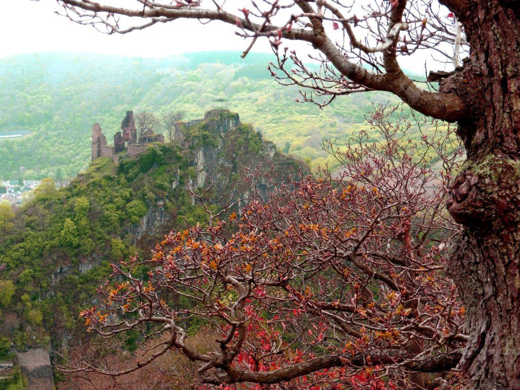 Ausblick auf Burg Are am AhrSteig