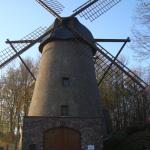Mühle