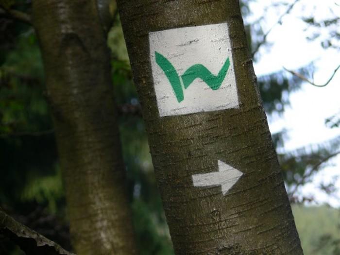 Westerwaldsteiglogo