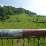 Wo andere Kühe einen Zaun haben, gibt's hier ne Schranke.