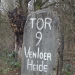 Tor 9