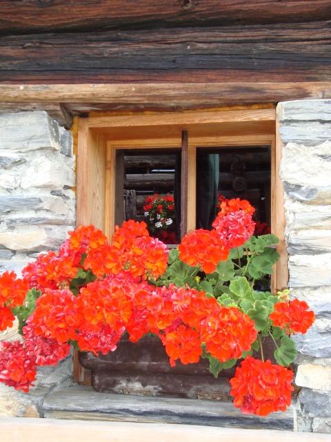 Fenster der Wastlalm