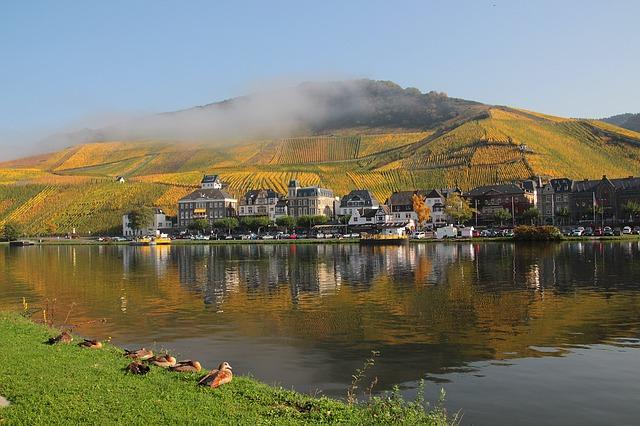 Herbst an der Mosel - Guenther Dillingen -